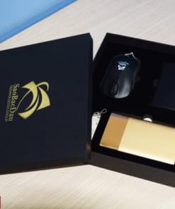 Bộ quà tặng Giftset 15 (Chuột + Sạc dự phòng + USB + Ví Namecard)