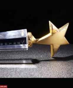 Cúp pha lê hình ngôi sao
