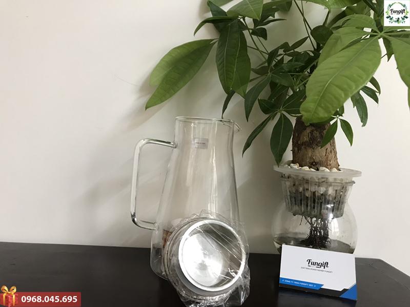 Bộ cốc bình đựng nước giá rẻ
