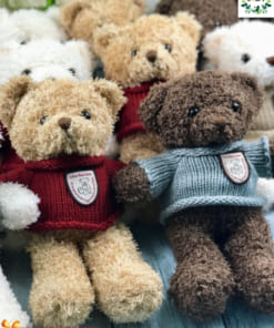 Gấu quà tặng giá sỉ