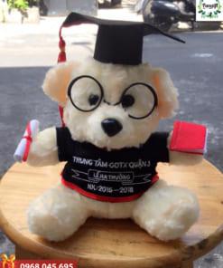 Gấu Teddy cử nhân