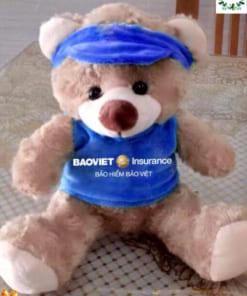 Gấu Teddy quà tặng