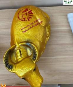 Mẫu trâu vàng quà tặng cho nhân viên