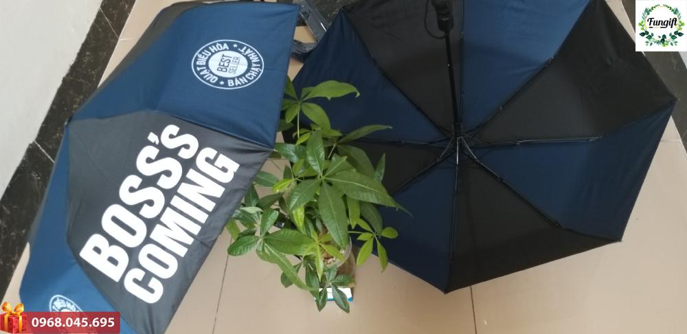 Sản xuất ô cầm tay theo yêu cầu